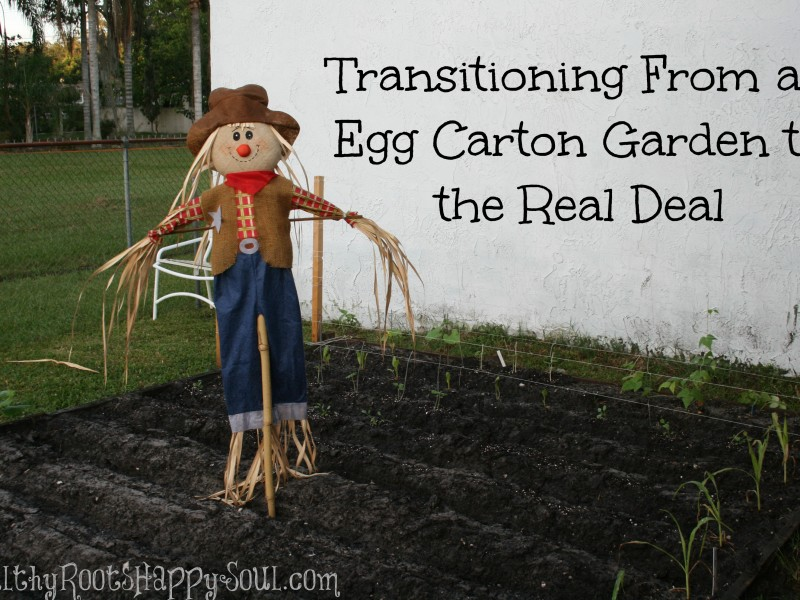 transitioning to a real garden