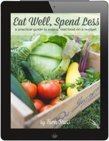 Eat-Well-Spend-LessiPadFrame
