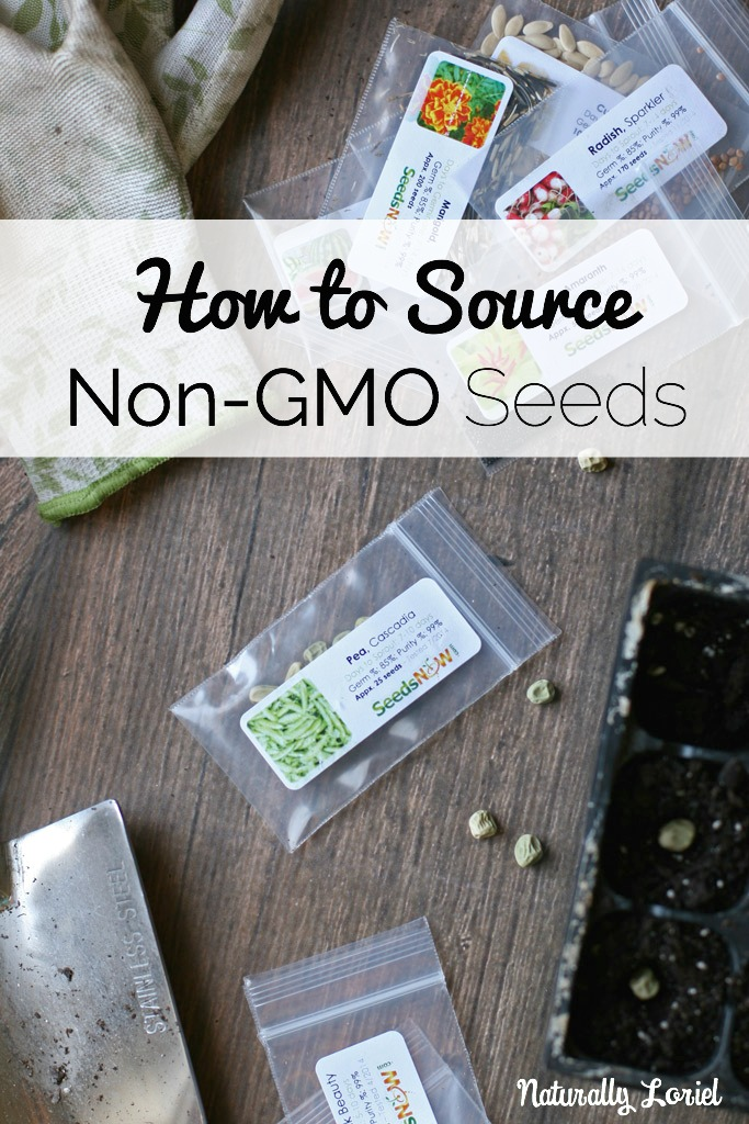 how-to-source-non-gmo-seeds-naturally-loriel-seedsnow
