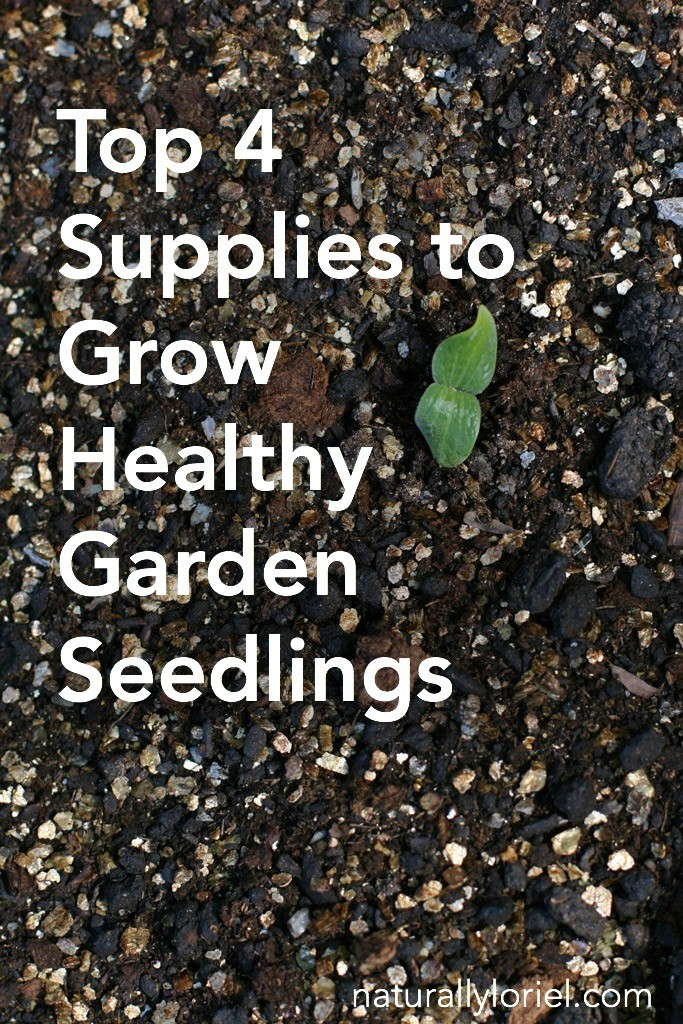 Tired of failing at growing plants from seeds? Here are 4 top supplies to grow healthy garden seedlings to help your chances drastically!