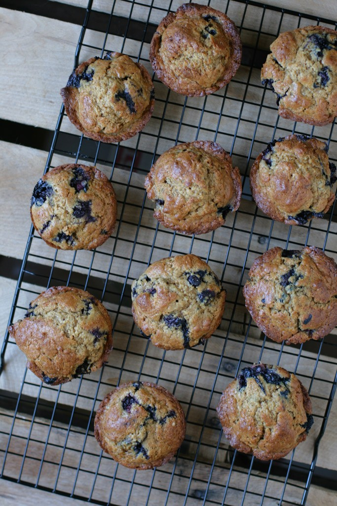 These buttermilk blueberry einkorn muffins turned out amazing; they're moist, spongey, have the perfect amount of sweetness, and have a hard, crusty top.