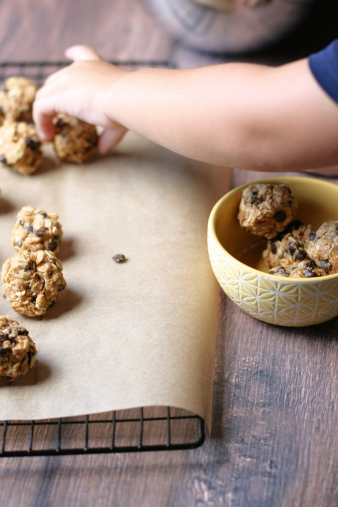 These no-bake oat bites are similar to granola bars but with better ingredients! Plus, learn a quick tip on how to make shredded coconut from coconut chips.
