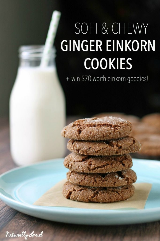 Looking for an easy cookie recipe that results in a soft, chewy texture that's so good you're going to want to eat 10? These ginger einkorn cookies are the answer!