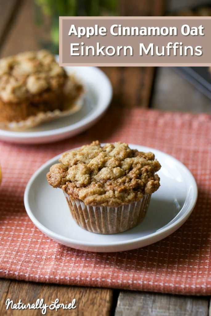 Apple Cinnamon Oat Einkorn Muffins with Streusel Topping